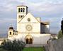 American Catholic - 800th Anniversary News